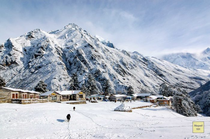 Everest Base Camp Trek with Gokyo Lake via Chola Pass